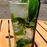 第74回 飲酒の危険性と恵比寿テキーラ事件